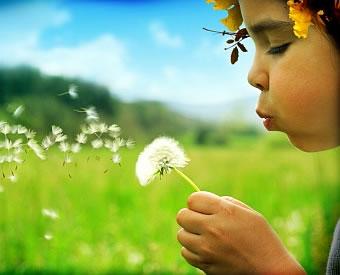 Экологические игры, в основе которых лежит изучение деревьев, цветов и трав.