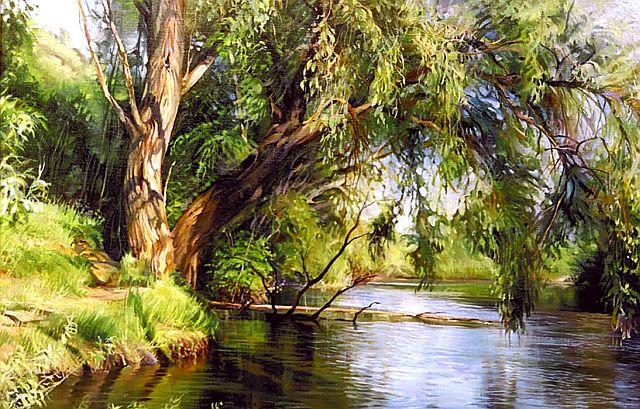 Пичугин мост. Дерево Ракита