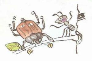 жук и муравей рисунок